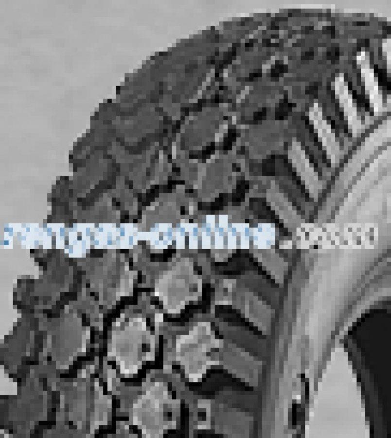 Deli S-356 4.10/3.50 -4 4pr Tl Set Reifen Mit Schlauch Nhs